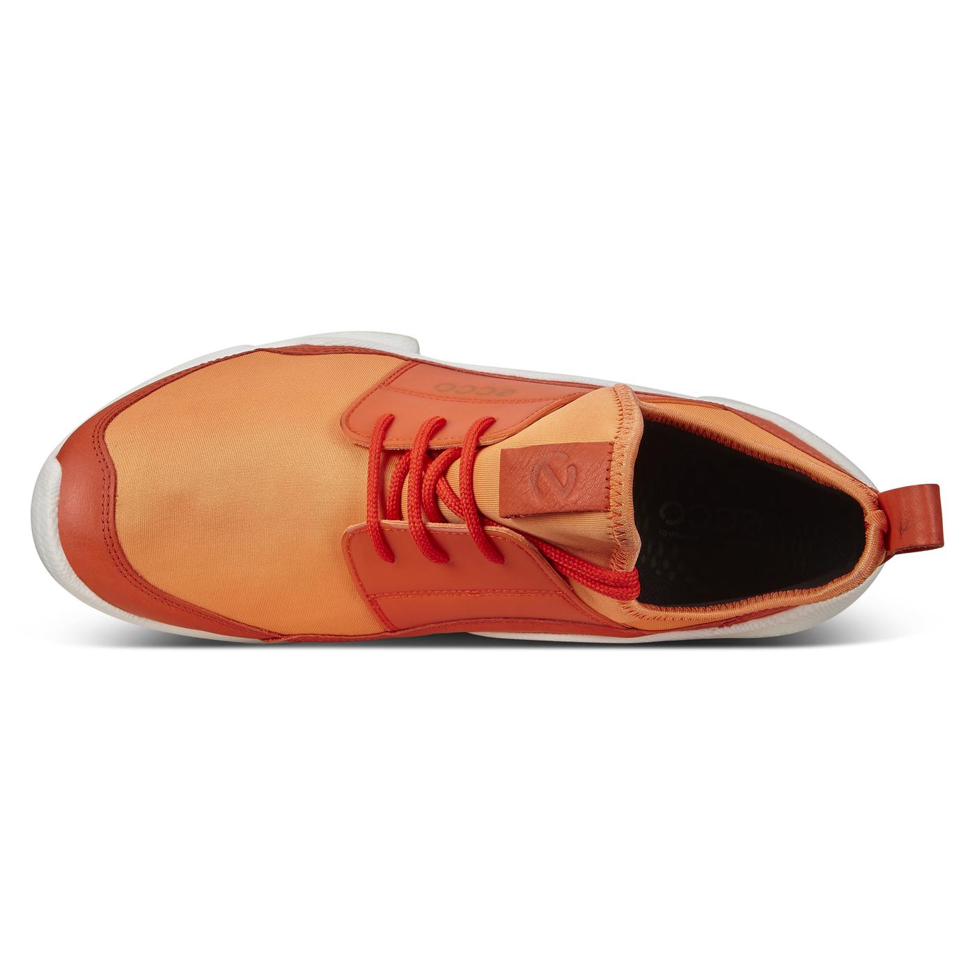 ECCO BIOM C - MEN'S Shoe