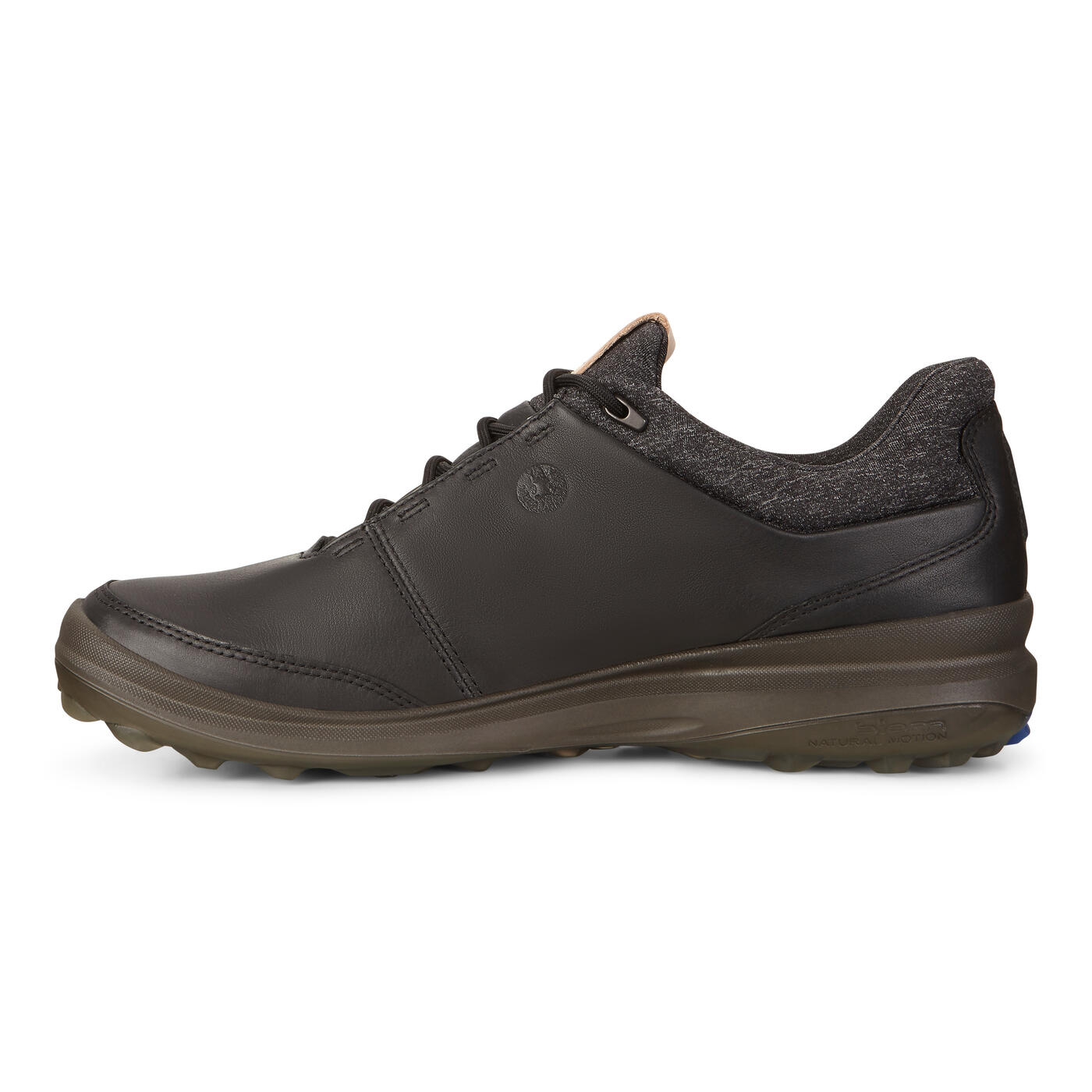 ECCO Men's Biom Hybrid 3 GTX Shoes